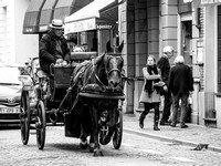 Horse & Carriage, Bruges